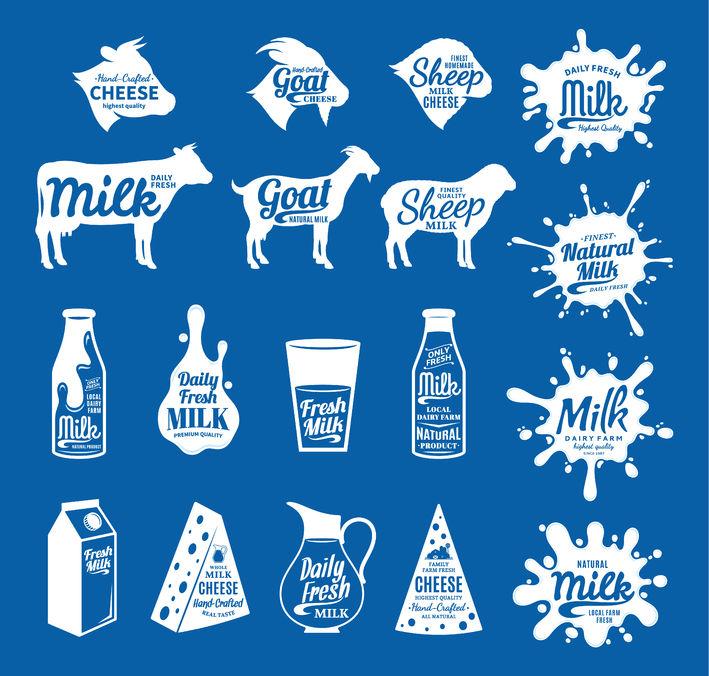 Le lait de brebis est en effet meilleur que le lait de vache pour la santé